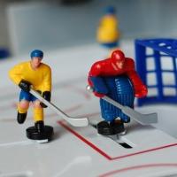 В Омске пытаются организовать чемпионат мира по хоккею