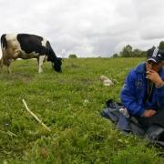 В Омской области нашли погибшего пастуха