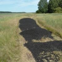 В Омской области в поле высыпали остатки асфальта