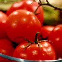 В Омской области начнут выращивать томаты и перец