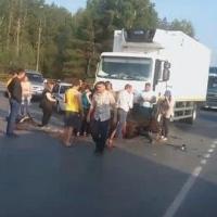 На трассе Тюмень-Омск грузовик сбил всадника на лошади