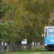 Тополя остановят трамваи