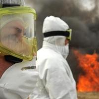 Жертвами АЧС пали почти 700 свиней Шербакульского района