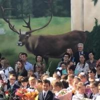 Владимир Варнавский привел в омскую гимназию на линейку своего внука