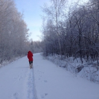 В Омске ожидается морозная неделя со снегом