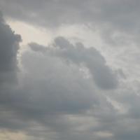 Теплая и пасмурная погода сохранится в Омске до конца недели