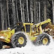 Омский депутат ответит за погубленный лес