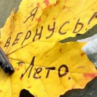 Омские синоптики обещают «бабье лето»