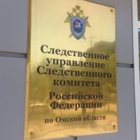 Следователи прекратили дело в отношении омской феминистки