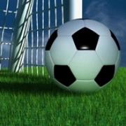 Директору школы футболистов указали на неспортивное поведение