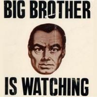 МВД получило 24 миллиона на систему слежения за СМИ