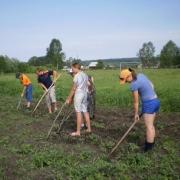 Омских школьников научат выращивать обед