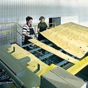 В Омской области начнут производить водостойкую фанеру