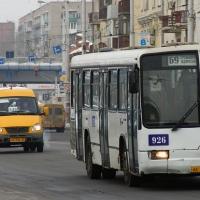 В Омске для частных автобусов большой вместимости установили предельный тариф