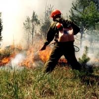 В Большеуковском районе потушили последний пожар