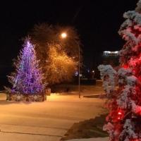 В новогодние каникулы омичи будут сидеть дома