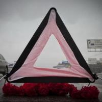 В Омской области на трассе насмерть сбили пешехода