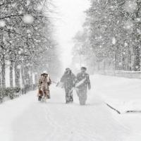 200 единиц техники вывел на дороги Омска субботний снегопад