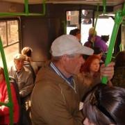 Автобусы садовые и пригородные. В чём разница?