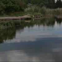 Под Омском в Иртыше утонул 11-летний мальчик