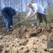 Омских дачников потянули в суд за сорняки