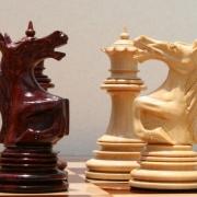 Стартовала шахматная лига