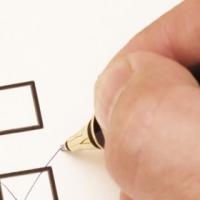 Депутаты обвинили галочки и крестики в подтасовке выборов