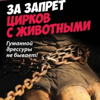 В Омске проведут митинг за цирк без жестокости