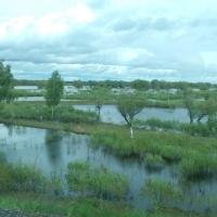 Режим ЧС из-за паводка в Омской области отменяют