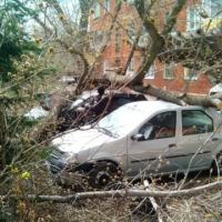 В Омской области от урагана пострадали 190 автомобилей