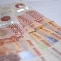 За сокрытие 2,3 млн рублей от налоговиков омскому директору назначили штраф