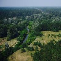 В Омской области 19 лесных пожаров удалось предотвратить с помощью видеокамер