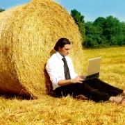 Областной бюджет направит на развитие сельского хозяйства 1 млрд 300 млн рублей