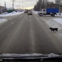 В Омске стало на 5,9 км дорог меньше