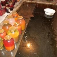 В Омской области пенсионер утонул в погребе