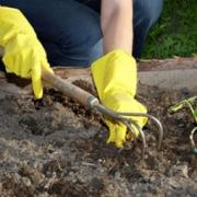 Садовые маршруты откроют 1 мая