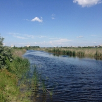 Депутаты горсовета снизят налог на землю вомских парках
