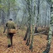Тело пропавшего в Омской области подростка нашли в лесу