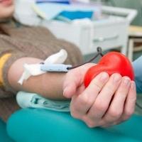 В 2014 году более 24 тысяч омичей стали донорами крови