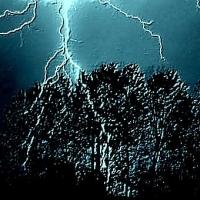Следком опровергает смерть ребенка от молнии в Омской области