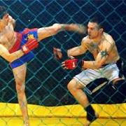 В Омске пройдет международный турнир по панкратиону