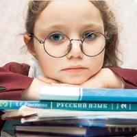 На апгрейд российского педобразования потратят 240 миллионов рублей