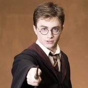 Гарри Поттеру соберут на монографию