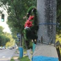 В Омске начинается суд над водителем, убившим на «зебре» супружескую пару