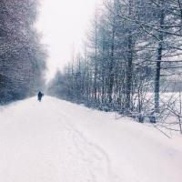 В поселке Биофабрика омичка обнаружила в снегу труп мужчины