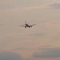 Авиакомпания заплатит штраф за задержку рейса из Омска