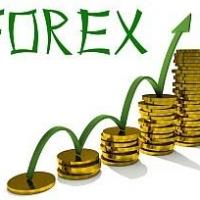 120 омичей потеряли деньги, играя на рынке «Форекс»