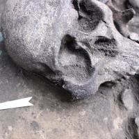 В центре Омска найдены артефакты возрастом более двух тысяч лет