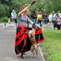 Собаки станцевали вместе с хозяевами на «Зеленом острове» в День омича