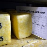 Омская область входит в ТОП-20 регионов России по объемам производства сыра